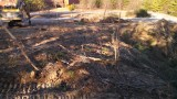 NEW-Boomer-Nashua-Site-Trees-Gone-pic1